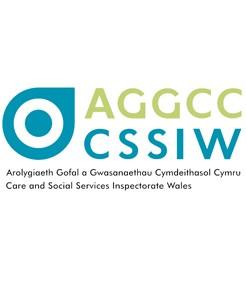 CSSIW logo for website